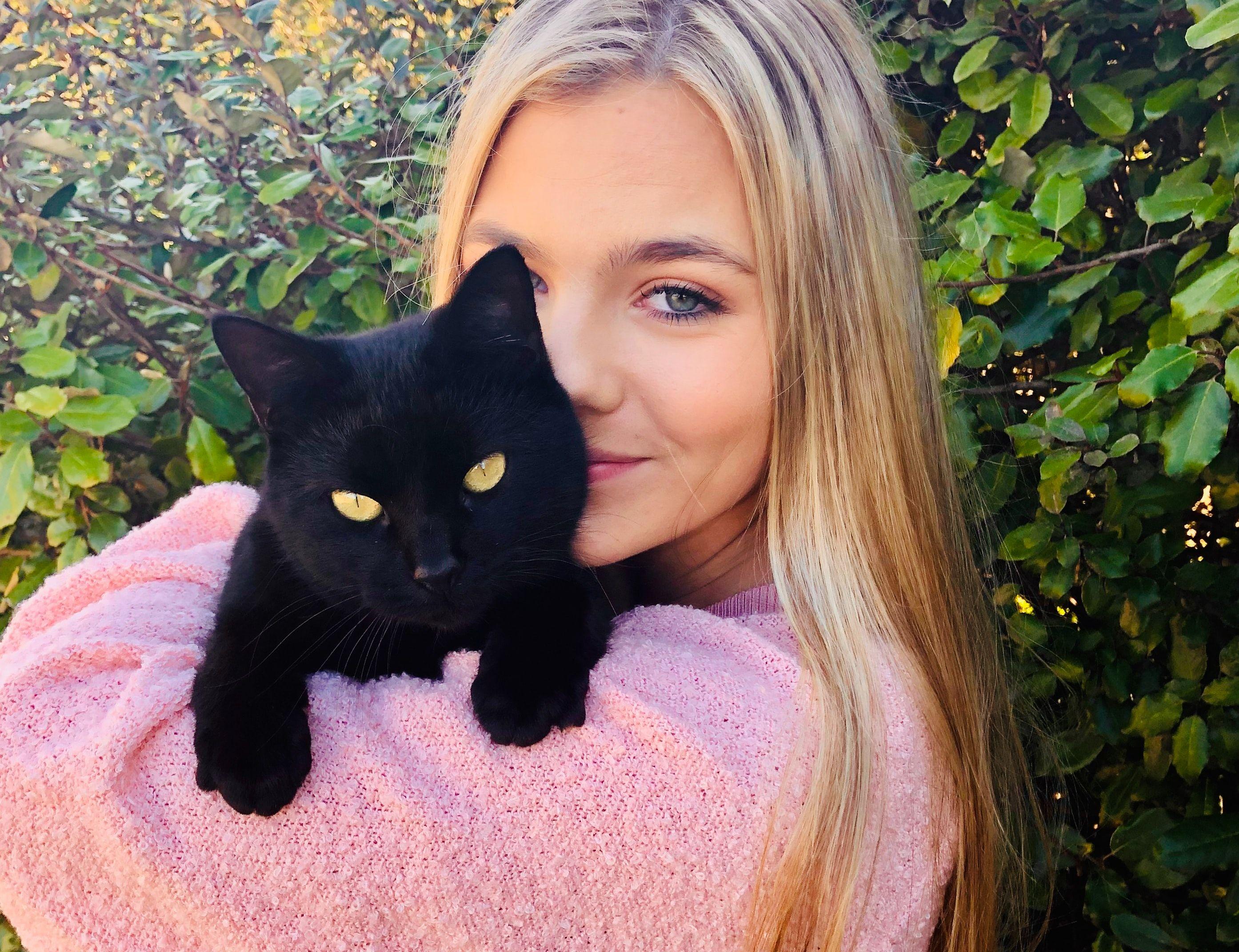 Опрос от Мамба: что думают мужчины о мифе 40 кошек