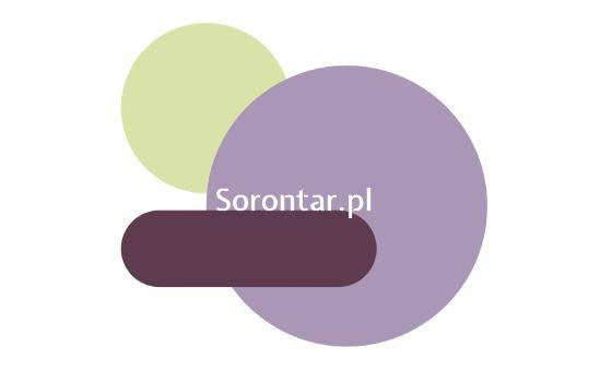 Добавить пресс-релиз на сайт Sorontar.Pl