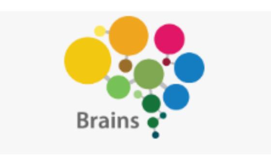 Добавить пресс-релиз на сайт Brains.global