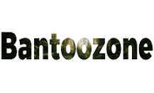 How to submit a press release to Bantoozone.org