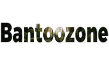 Добавить пресс-релиз на сайт Bantoozone.org