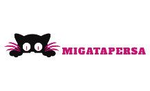 Добавить пресс-релиз на сайт Migatapersa