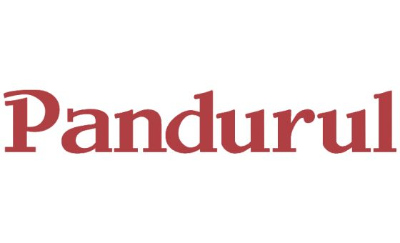 How to submit a press release to Pandurul.Ro