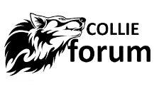 Добавить пресс-релиз на сайт Collieforum.Pl