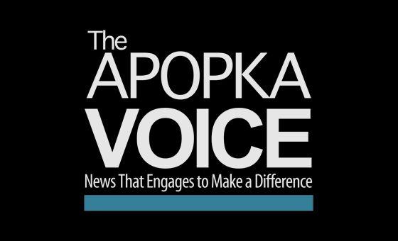 Добавить пресс-релиз на сайт Theapopkavoice.com