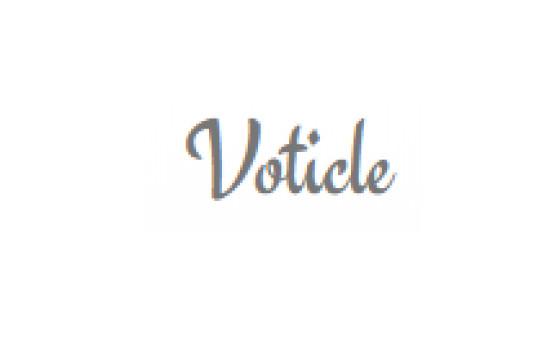 Добавить пресс-релиз на сайт Voticle.com
