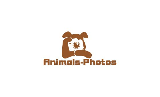 Animals-photos.net