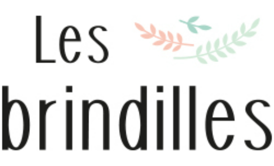 How to submit a press release to Les brindilles