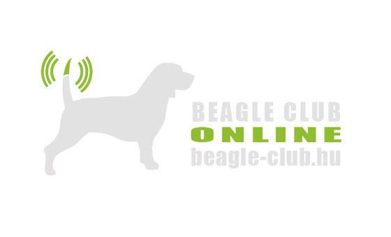 Добавить пресс-релиз на сайт Beagle-club.hu