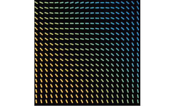 Myinterior.design.blog
