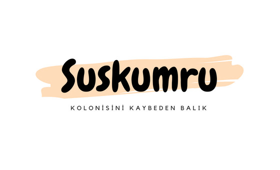 How to submit a press release to Suskumru