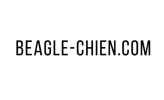 Добавить пресс-релиз на сайт Beagle-chien.com