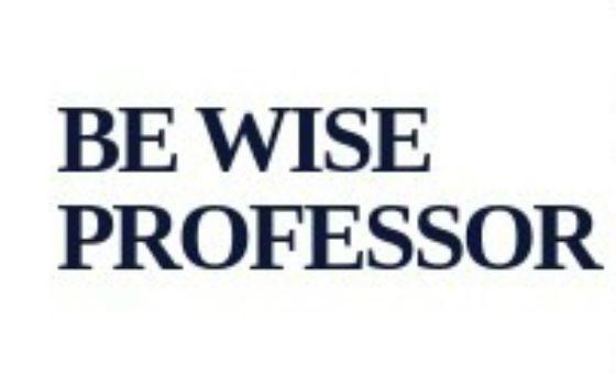 Bewiseprof.com