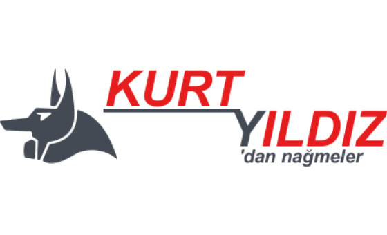 How to submit a press release to Kurt YILDIZ