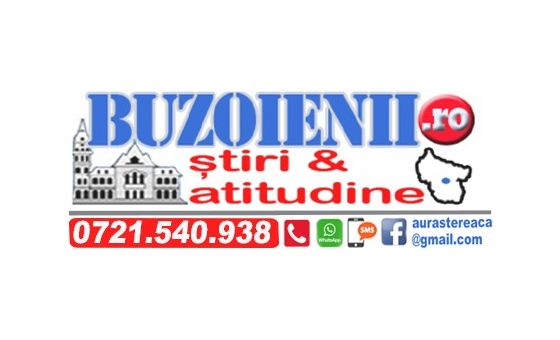 How to submit a press release to Buzoienii.Ro