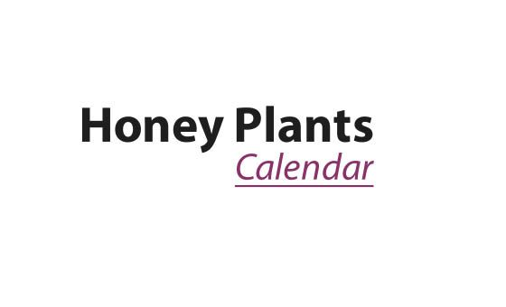 How to submit a press release to Honey Plants Calendar
