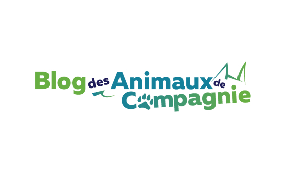 How to submit a press release to Planetanimo.fr