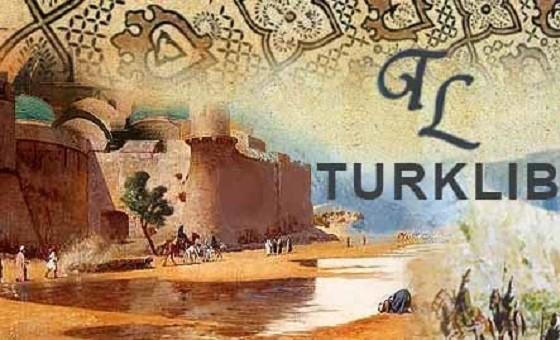 Добавить пресс-релиз на сайт Turklib