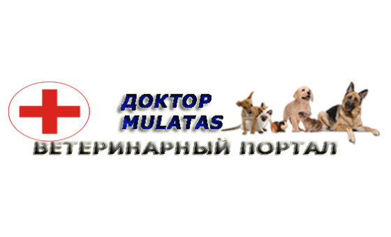 How to submit a press release to Mulatas.ru