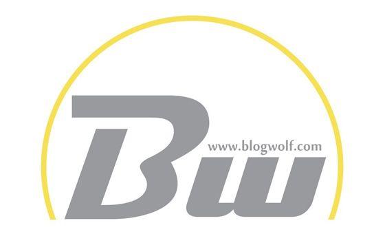 Добавить пресс-релиз на сайт BlogWolf