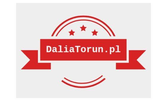 Добавить пресс-релиз на сайт Daliatorun.Pl