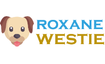 How to submit a press release to Roxane-westie.fr