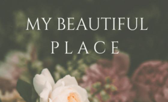 How to submit a press release to Mybeautifulplace.it