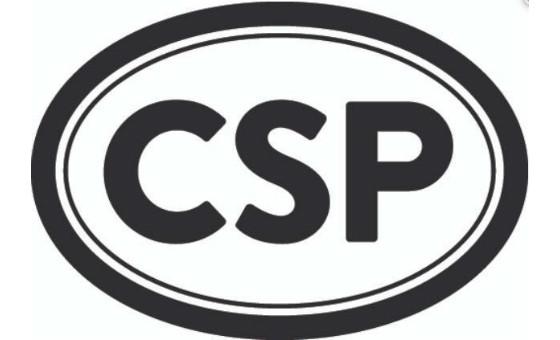 Добавить пресс-релиз на сайт CSP Daily News