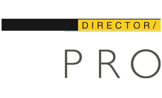 Prodirector.Net